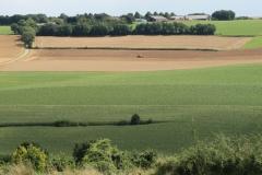 Ransdaal-177-Vergezicht-met-glooiende-velden