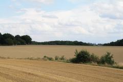 Ransdaal-192-Vergezicht-met-glooiende-velden-en-windmolen