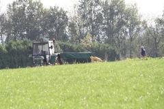 Ravensbosch-Koolrapenoogst-004