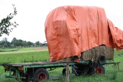 Simpelveld-Huls-040-Wagen-met-hooi