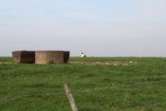 Engwegen-Keutenberg-Sousberg-041-Drinkbakken-met-liggende-koe