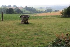 Eyserheide-Voerbak-in-schapenwei