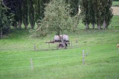 Simpelveld-Huls-035-Watervat
