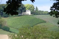 Rondom-Kanne-123-Wijngaarden