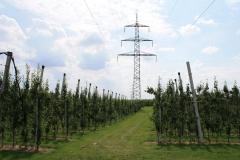 Spaubeek-039-Perenboomgaard