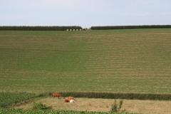 Ubachsberg-046-Appels-oogsten-met-een-treintje