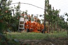 Ubachsberg-048-Appels-oogsten-met-een-treintje