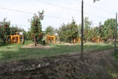 Ubachsberg-050-Appels-oogsten