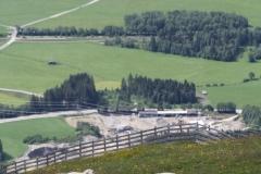 Neukirchen-052-Berglandschap-met-schapen