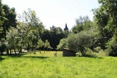 Nuth-138-Vergezicht-met-Schuurtje-en-Sint-Bavokerk