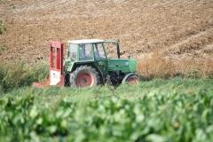 Houthem-en-omgeving-066-Tractor