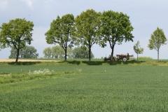 Voerendaal-060-Landschap-met-tractor